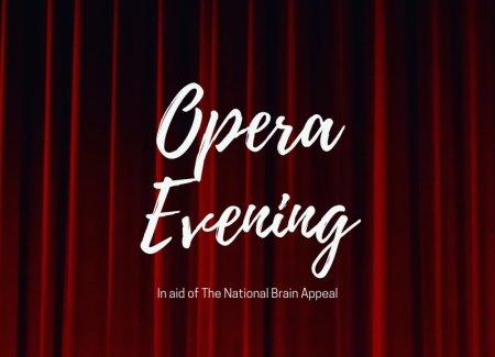 Opera Evening ticket