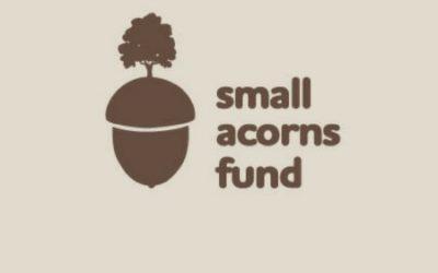 Small Acorns take seed