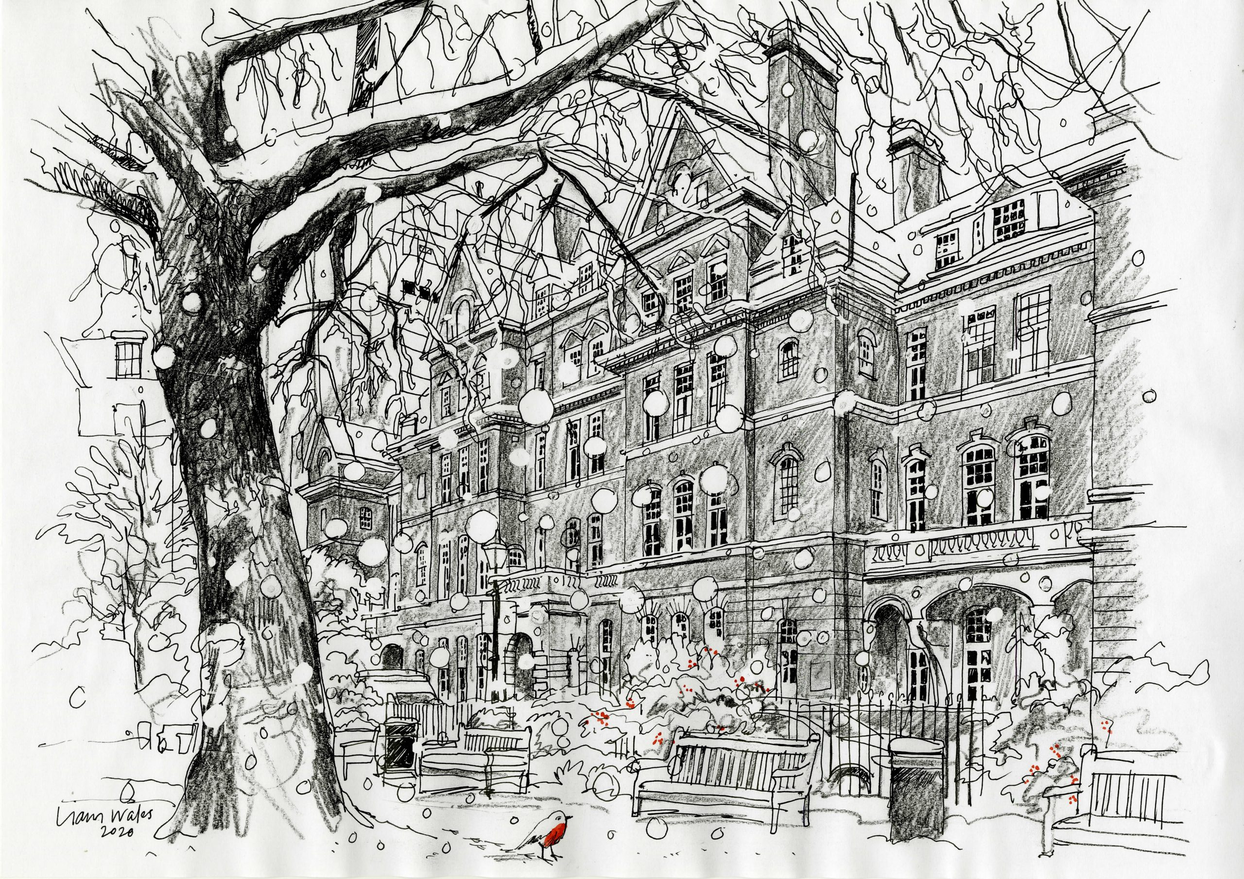 Queen Square Christmas